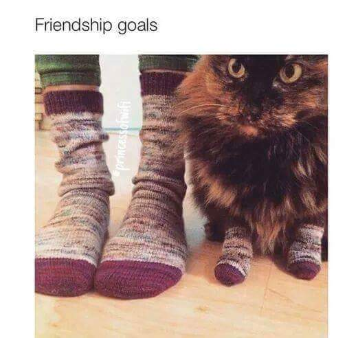Friendship Goals